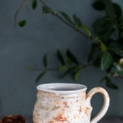 ceramic white orange textured cup with cookies next to it and a green plant in the background
