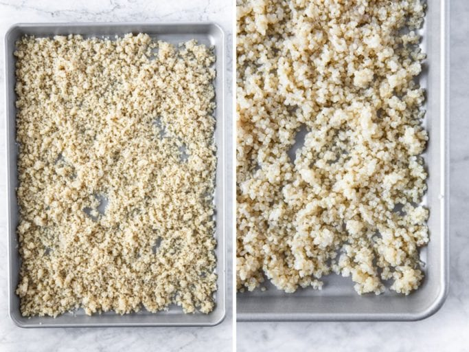 tray of cooked white quinoa