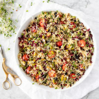 bowl of quinoa salad with tomatoes, pistachios, radicchio, daikon sprouts