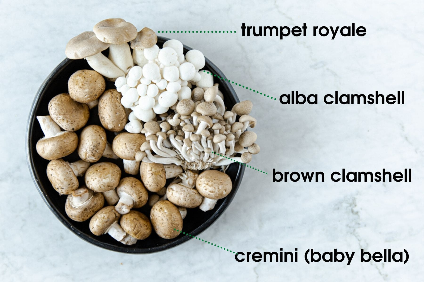 a plate showing four kinds of mushrooms: trumpets, white and brown clamshells and crimini