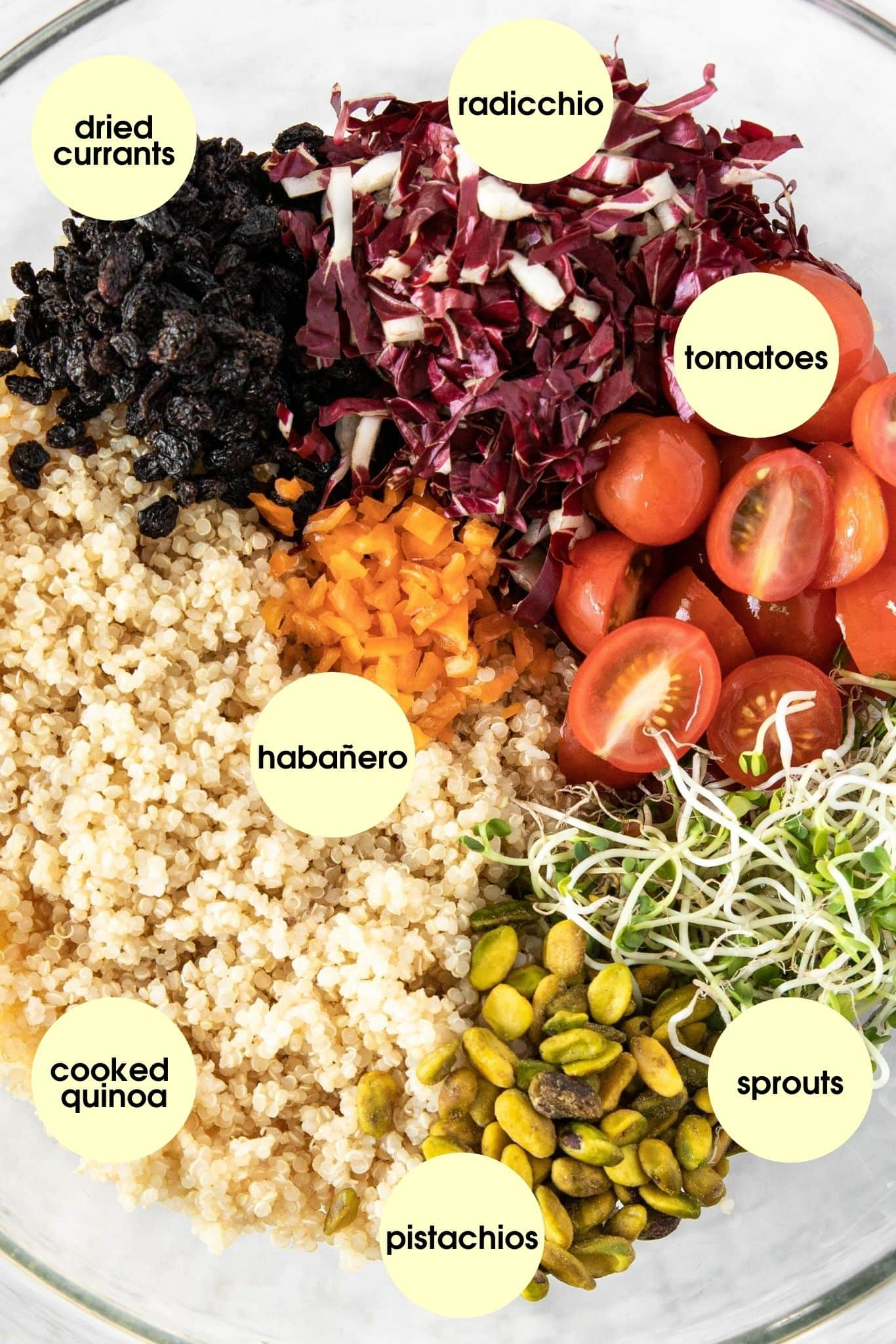 Ingredients for Quinoa Salad With Cherry Tomatoes, Radicchio, and Pistachios from verygoodcook.com